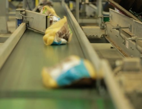 Barriers to increased automation and technological development in food processing