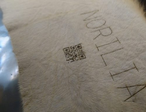 Traceability of hides through the supply chain